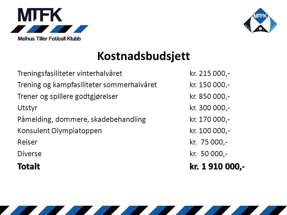 Kostnadsbudsjett Totalt kr. 1 910 000,-
