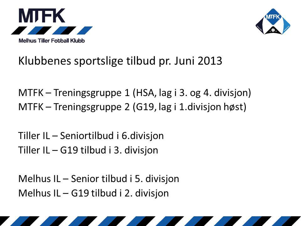 Klubbenes sportslige tilbud pr. Juni 2013