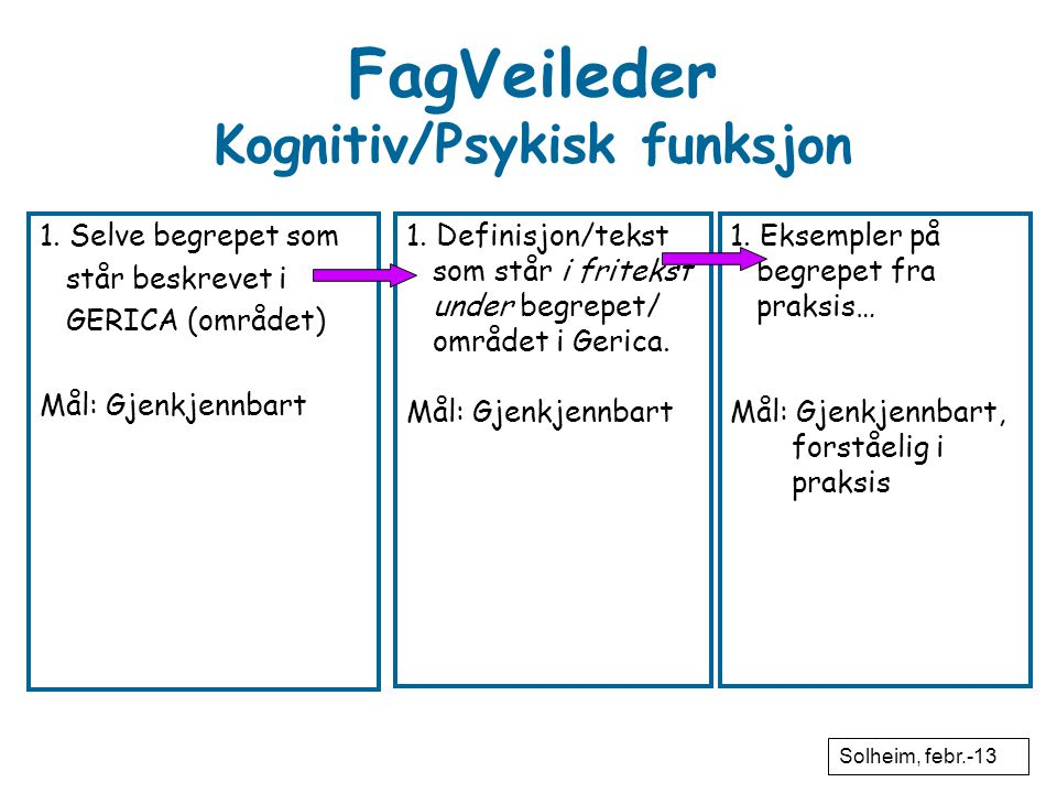 FagVeileder Kognitiv/Psykisk funksjon
