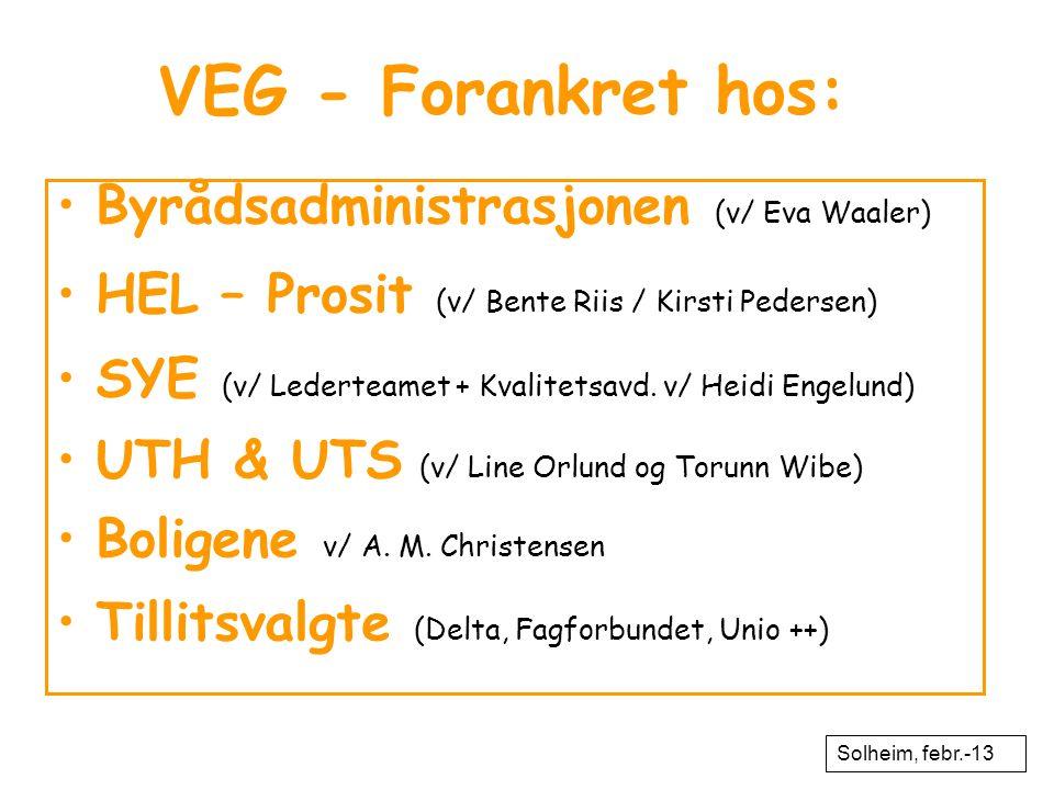 VEG - Forankret hos: Byrådsadministrasjonen (v/ Eva Waaler)