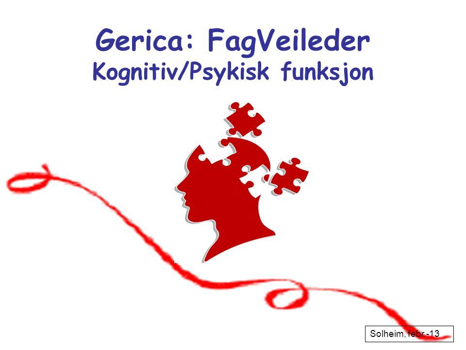 Gerica: FagVeileder Kognitiv/Psykisk funksjon