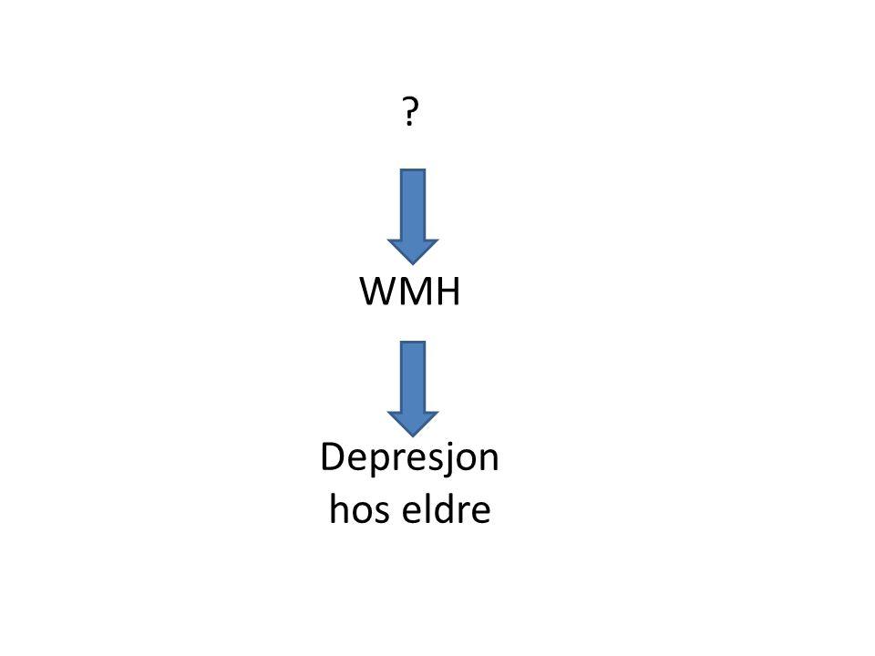 WMH Depresjon hos eldre