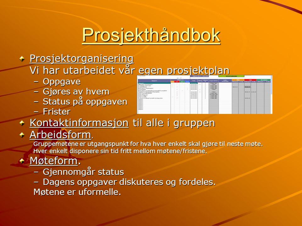 Prosjekthåndbok Prosjektorganisering
