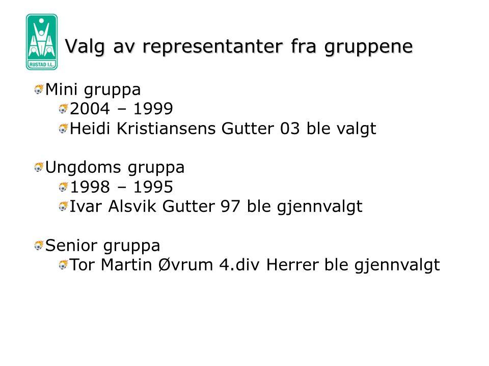 Valg av representanter fra gruppene