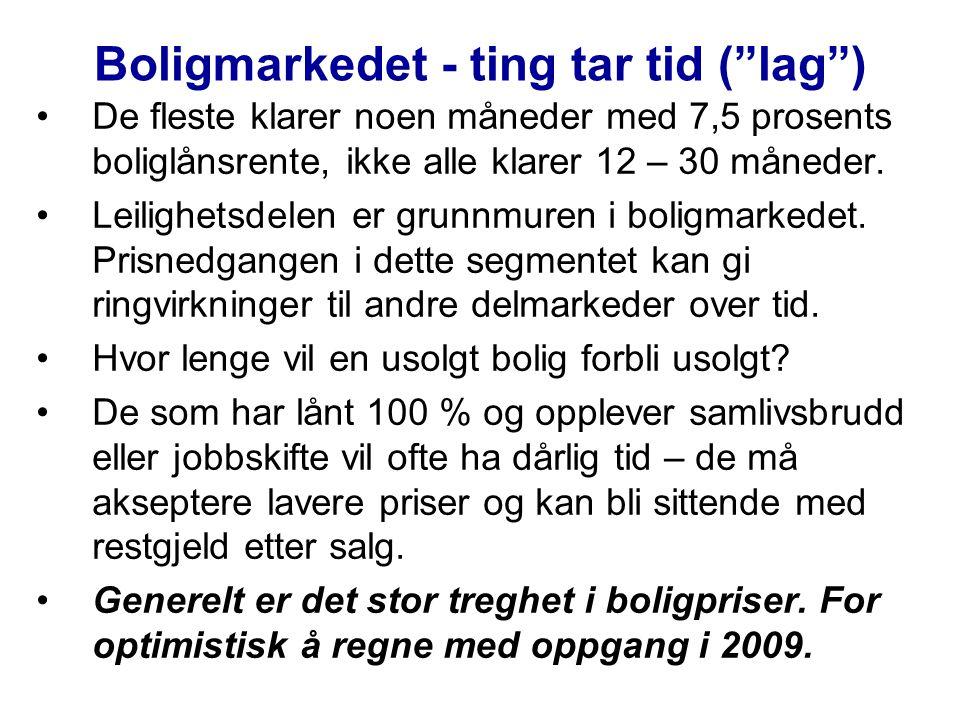 Boligmarkedet - ting tar tid ( lag )