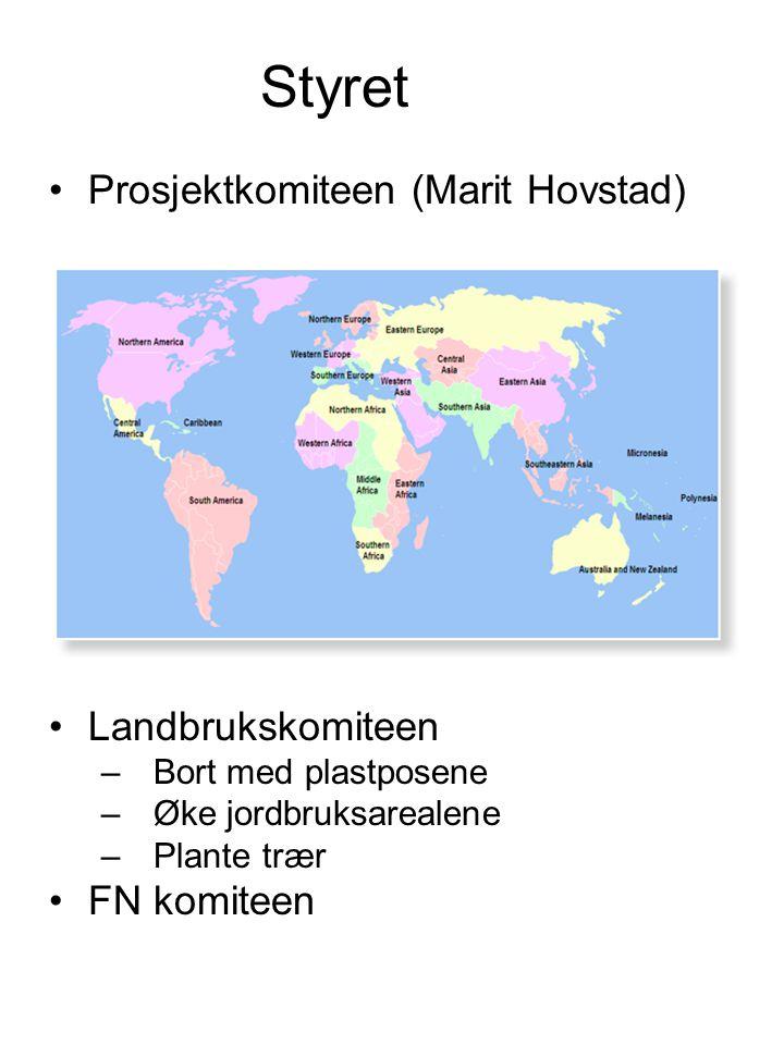 Styret Prosjektkomiteen (Marit Hovstad) Landbrukskomiteen FN komiteen