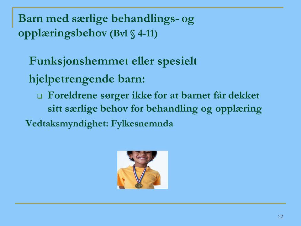 Barn med særlige behandlings- og opplæringsbehov (Bvl § 4-11)