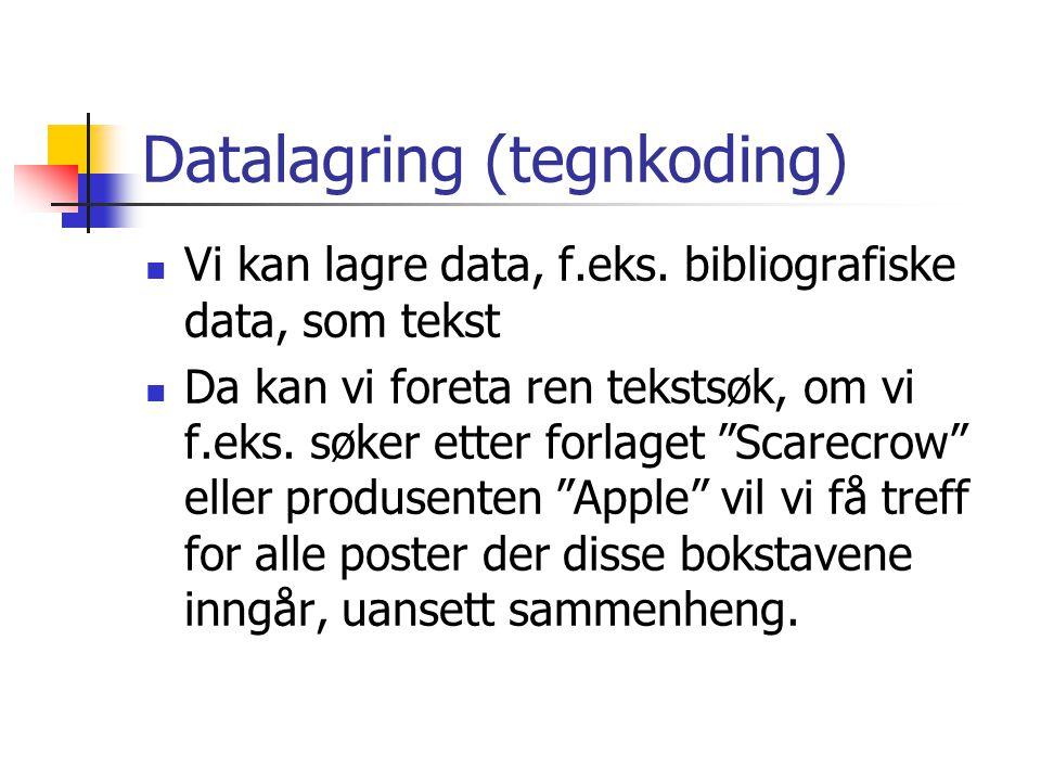 Datalagring (tegnkoding)