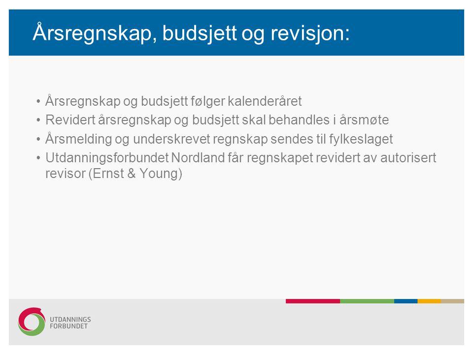 Årsregnskap, budsjett og revisjon: