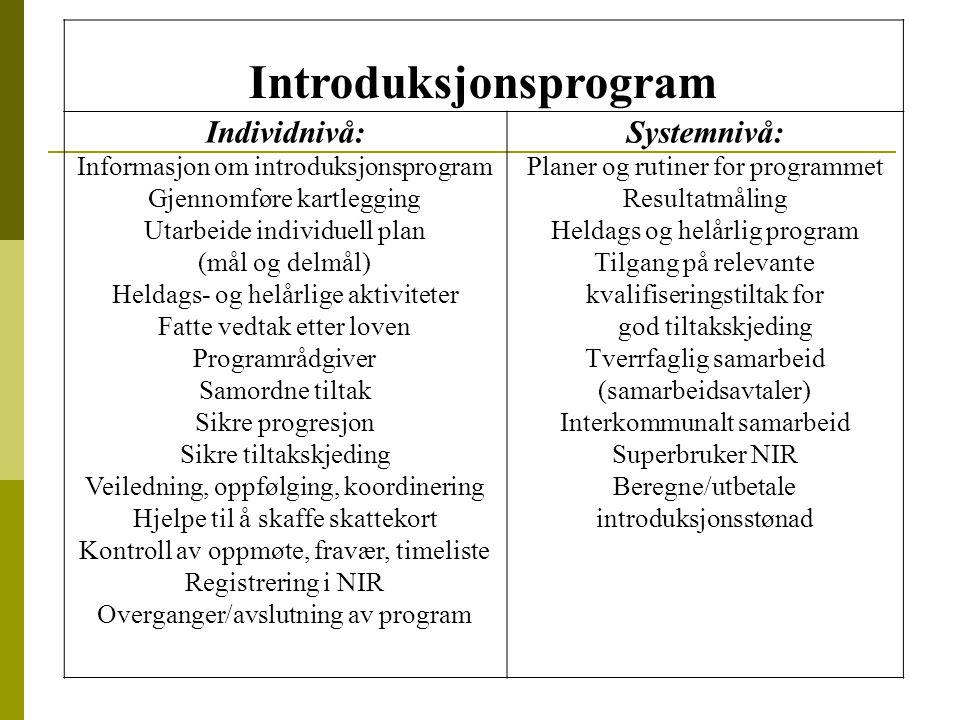 Introduksjonsprogram