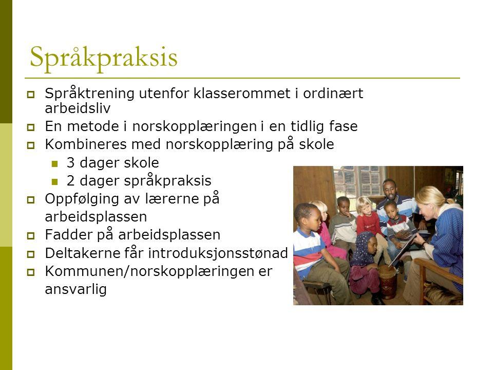 Språkpraksis Språktrening utenfor klasserommet i ordinært arbeidsliv