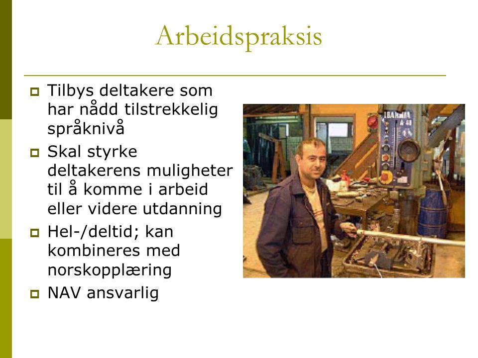 Arbeidspraksis Tilbys deltakere som har nådd tilstrekkelig språknivå