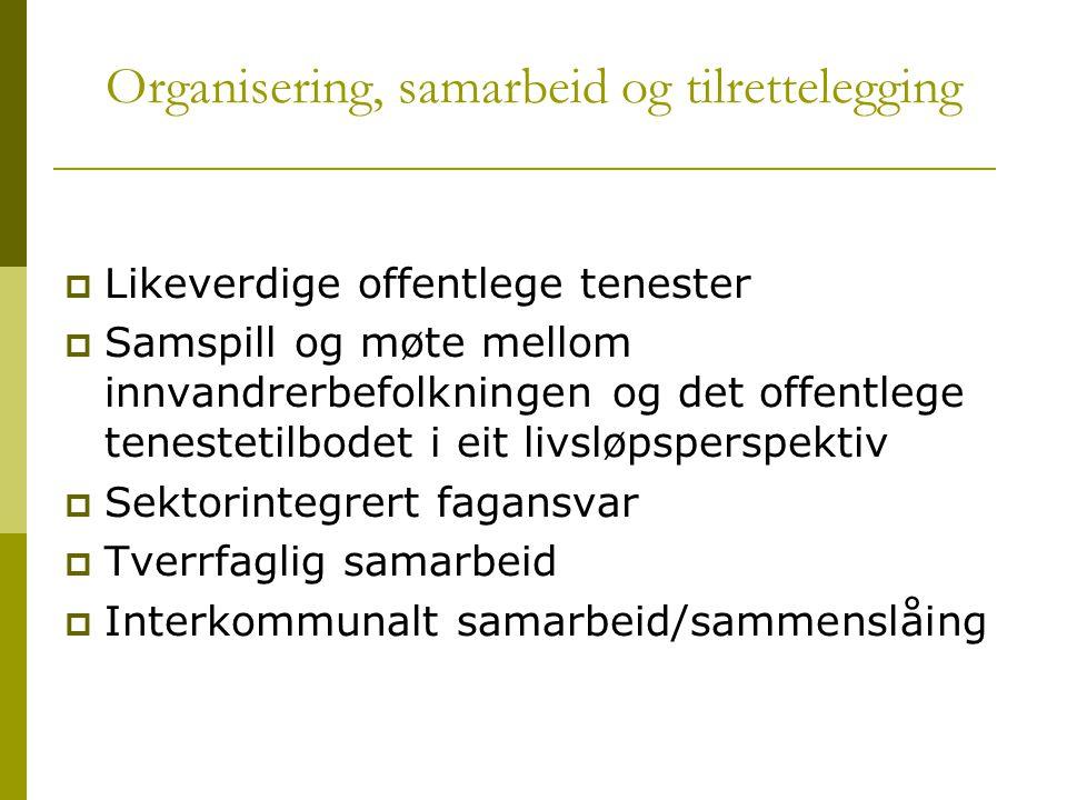 Organisering, samarbeid og tilrettelegging