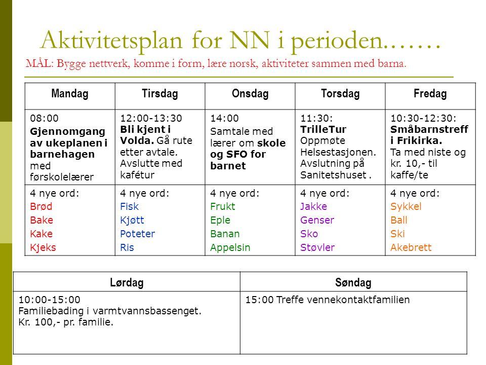 Aktivitetsplan for NN i perioden.……
