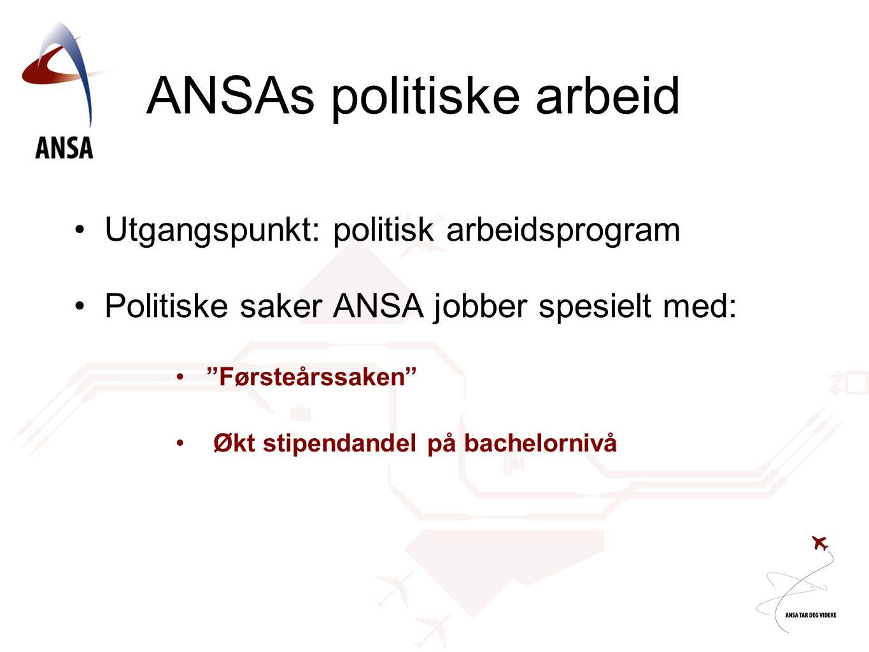 ANSAs politiske arbeid