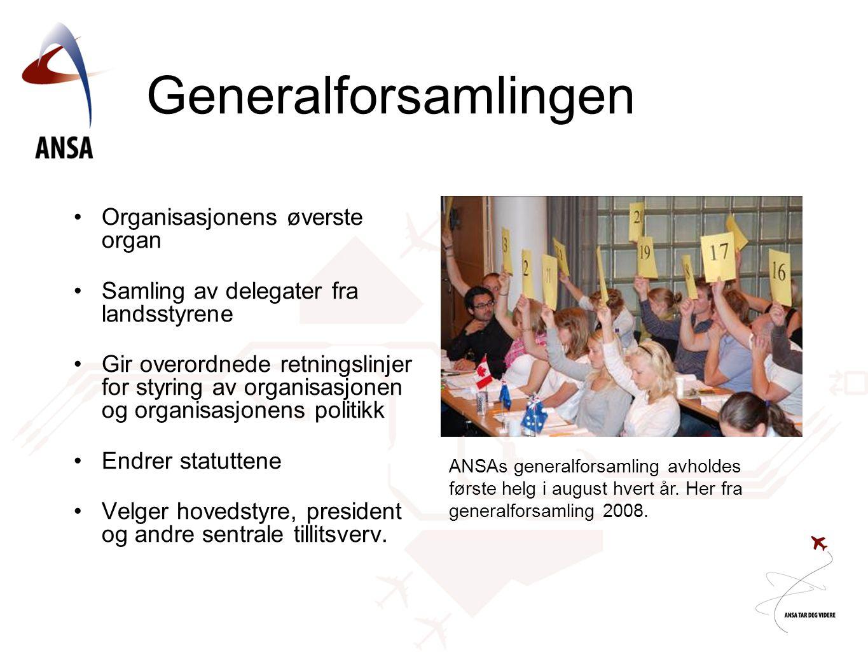 Generalforsamlingen Organisasjonens øverste organ