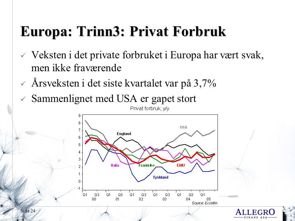 Europa: Trinn3: Privat Forbruk