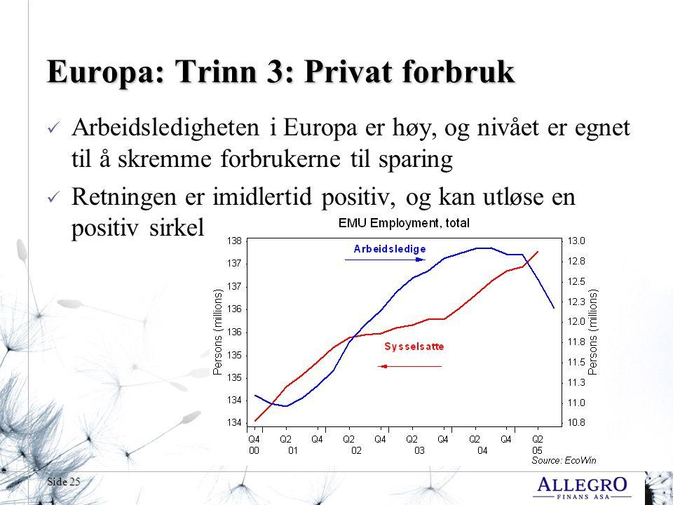 Europa: Trinn 3: Privat forbruk