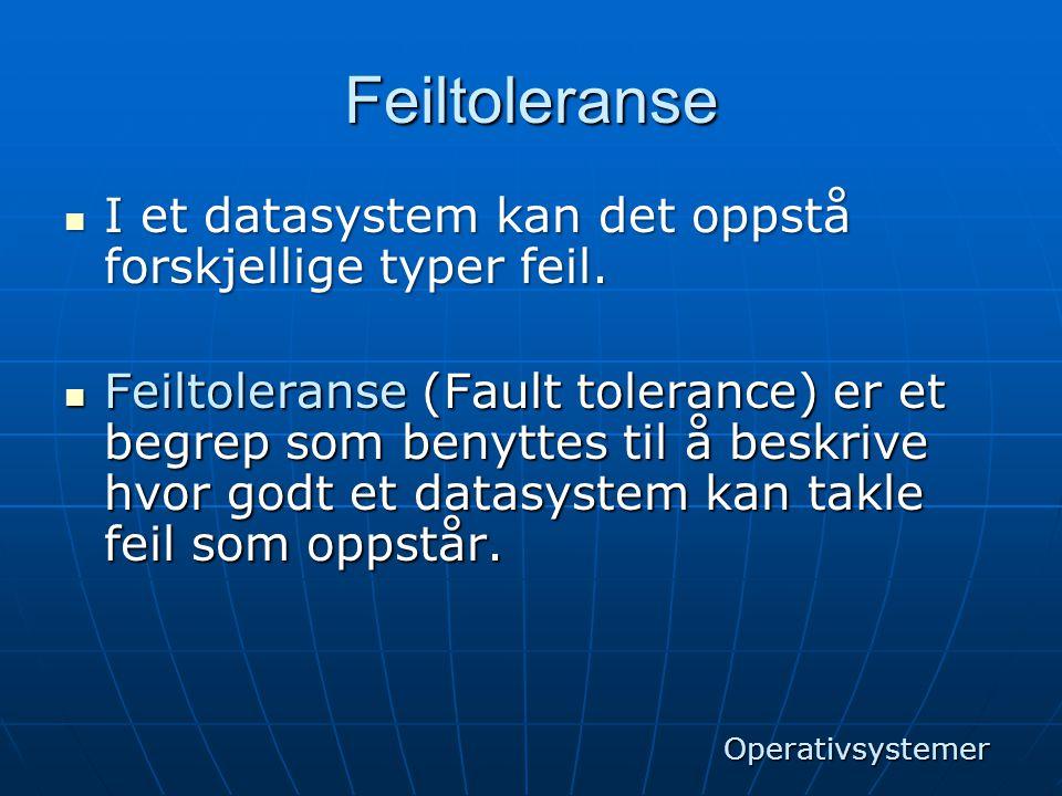 Feiltoleranse I et datasystem kan det oppstå forskjellige typer feil.