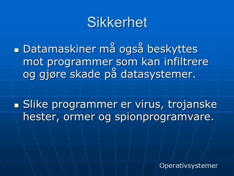 Sikkerhet Datamaskiner må også beskyttes mot programmer som kan infiltrere og gjøre skade på datasystemer.