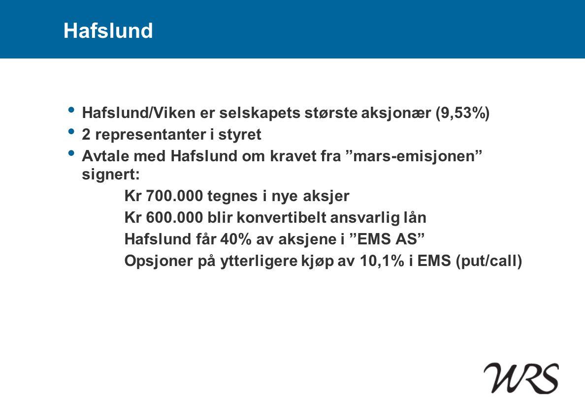 Hafslund Hafslund/Viken er selskapets største aksjonær (9,53%)