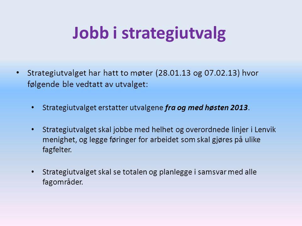Jobb i strategiutvalg Strategiutvalget har hatt to møter (28.01.13 og 07.02.13) hvor følgende ble vedtatt av utvalget: