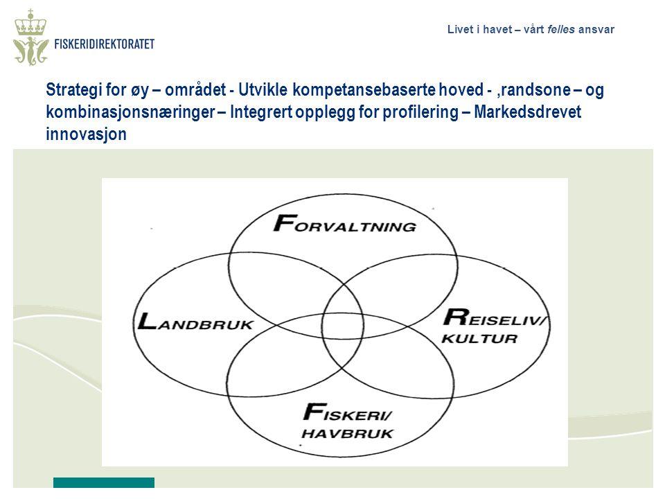 Strategi for øy – området - Utvikle kompetansebaserte hoved - ,randsone – og kombinasjonsnæringer – Integrert opplegg for profilering – Markedsdrevet innovasjon