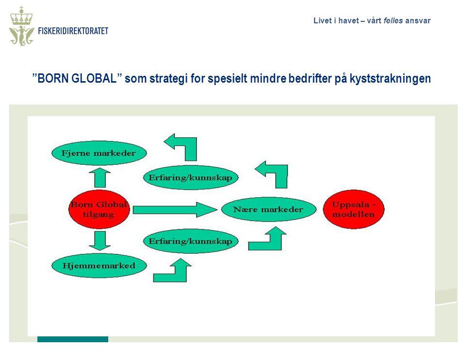 BORN GLOBAL som strategi for spesielt mindre bedrifter på kyststrakningen