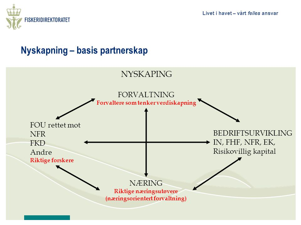 Nyskapning – basis partnerskap