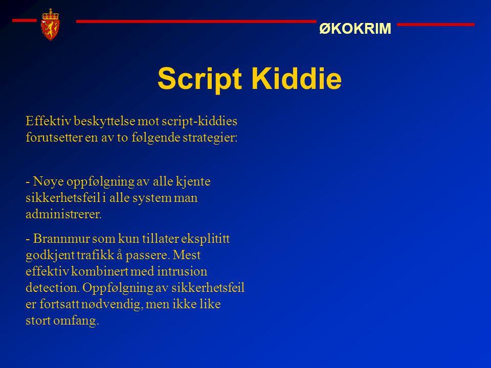 Script Kiddie Effektiv beskyttelse mot script-kiddies forutsetter en av to følgende strategier: