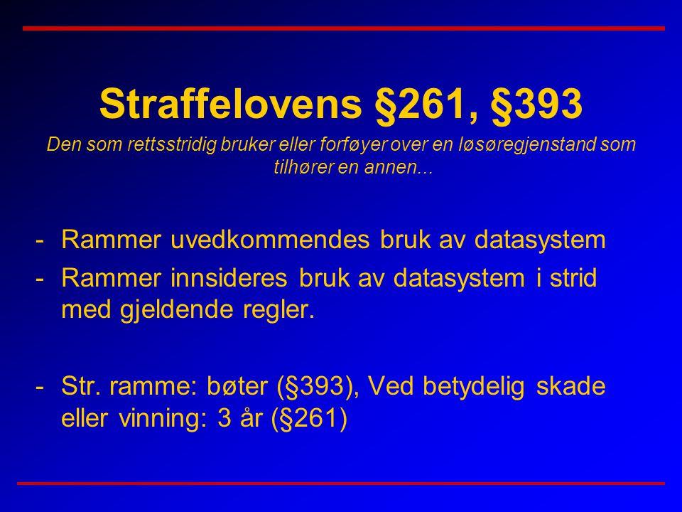 Straffelovens §261, §393 Rammer uvedkommendes bruk av datasystem