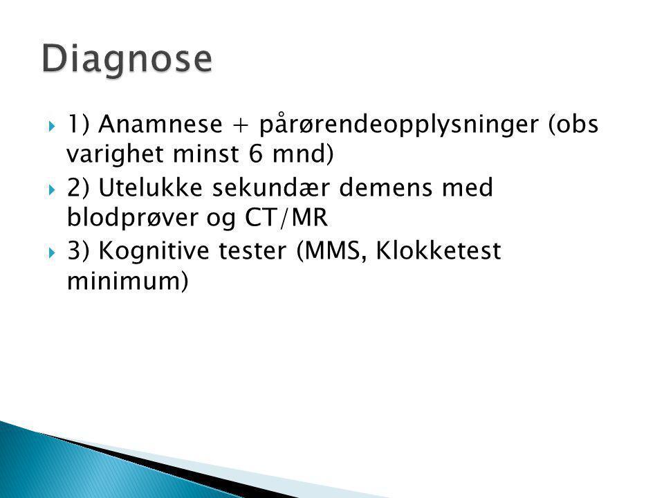 Diagnose 1) Anamnese + pårørendeopplysninger (obs varighet minst 6 mnd) 2) Utelukke sekundær demens med blodprøver og CT/MR.