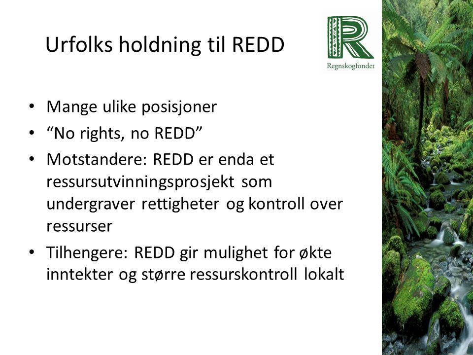 Urfolks holdning til REDD