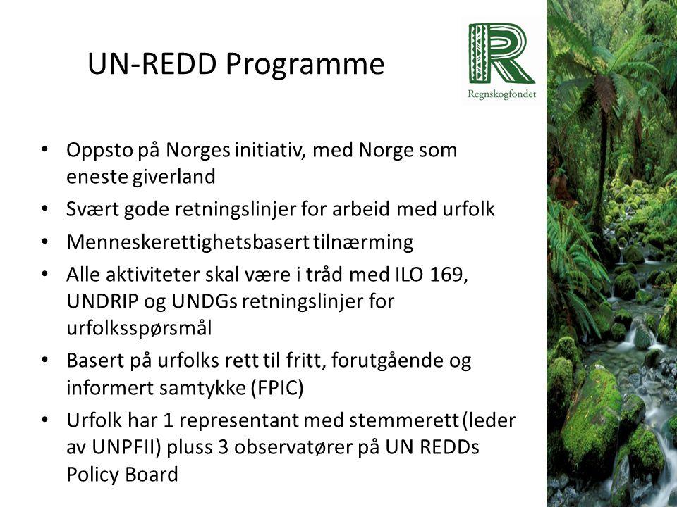 UN-REDD Programme Oppsto på Norges initiativ, med Norge som eneste giverland. Svært gode retningslinjer for arbeid med urfolk.