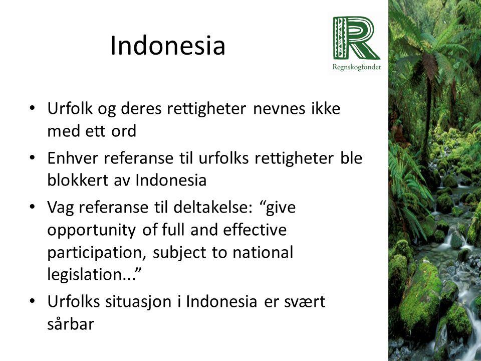 Indonesia Urfolk og deres rettigheter nevnes ikke med ett ord