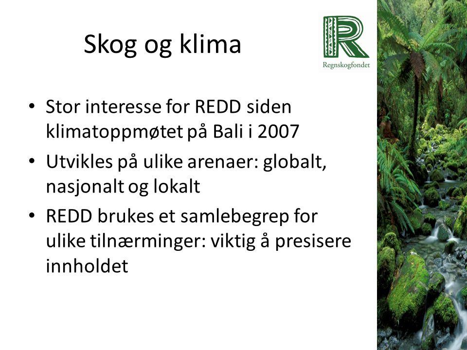 Skog og klima Stor interesse for REDD siden klimatoppmøtet på Bali i 2007. Utvikles på ulike arenaer: globalt, nasjonalt og lokalt.