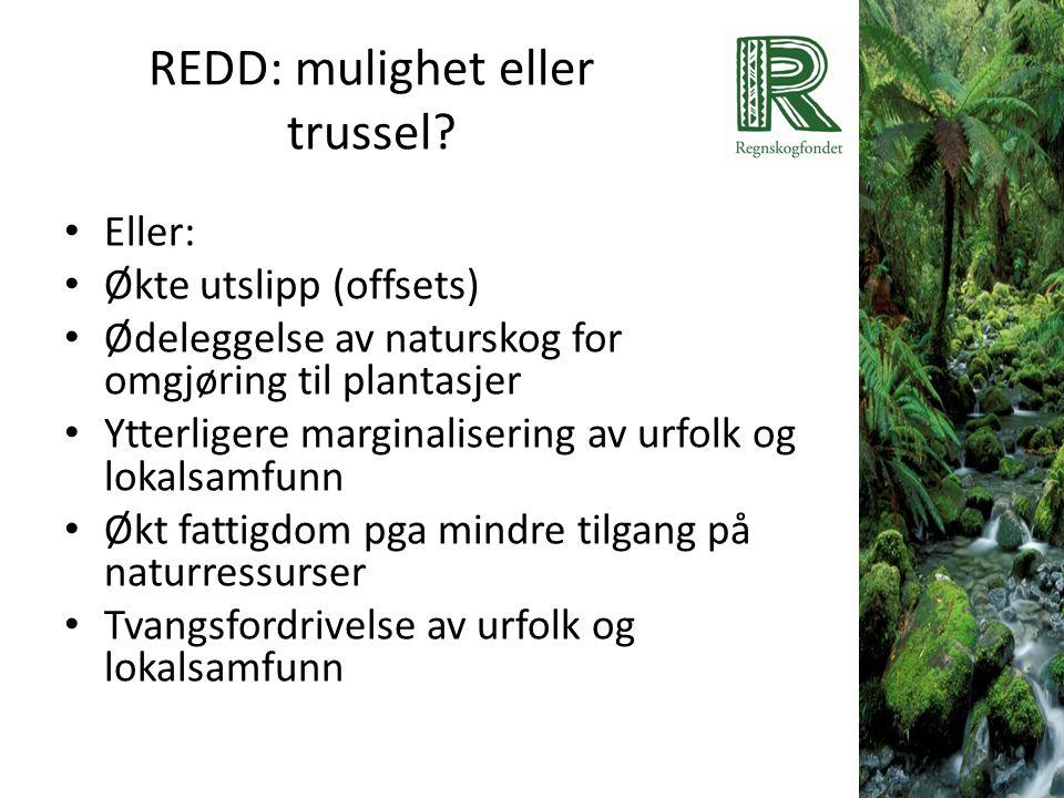 REDD: mulighet eller trussel