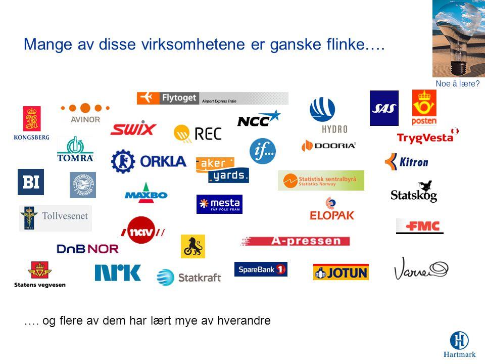 Mange av disse virksomhetene er ganske flinke….