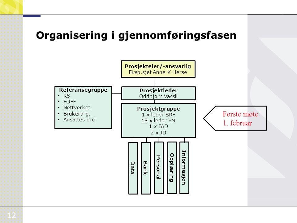 Organisering i gjennomføringsfasen