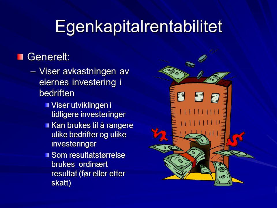 Egenkapitalrentabilitet