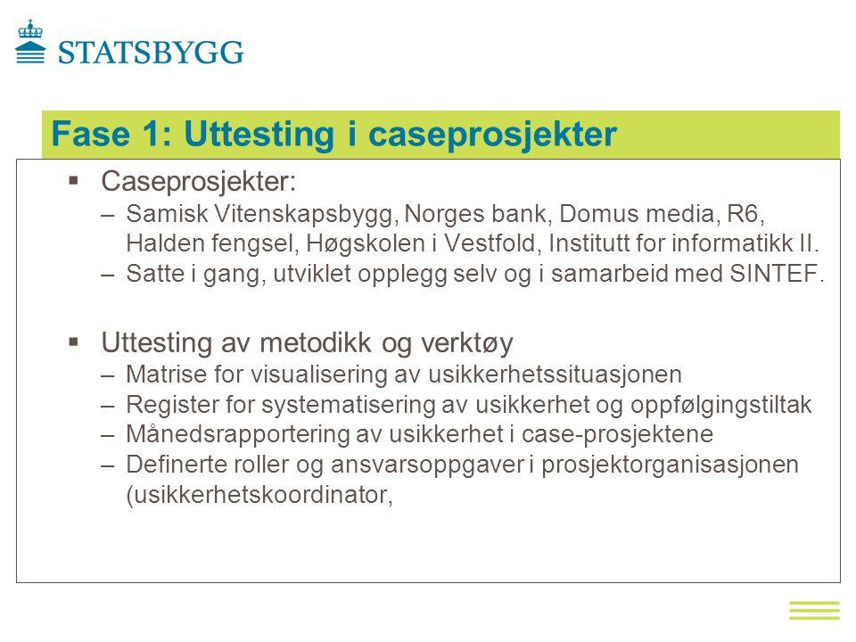 Fase 1: Uttesting i caseprosjekter