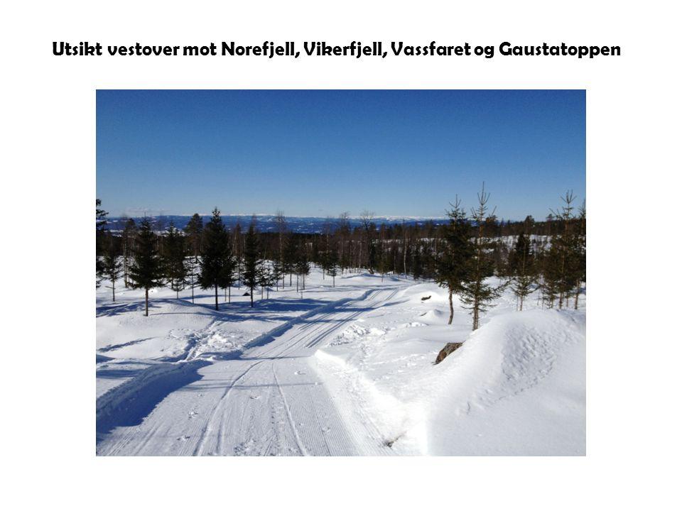Utsikt vestover mot Norefjell, Vikerfjell, Vassfaret og Gaustatoppen