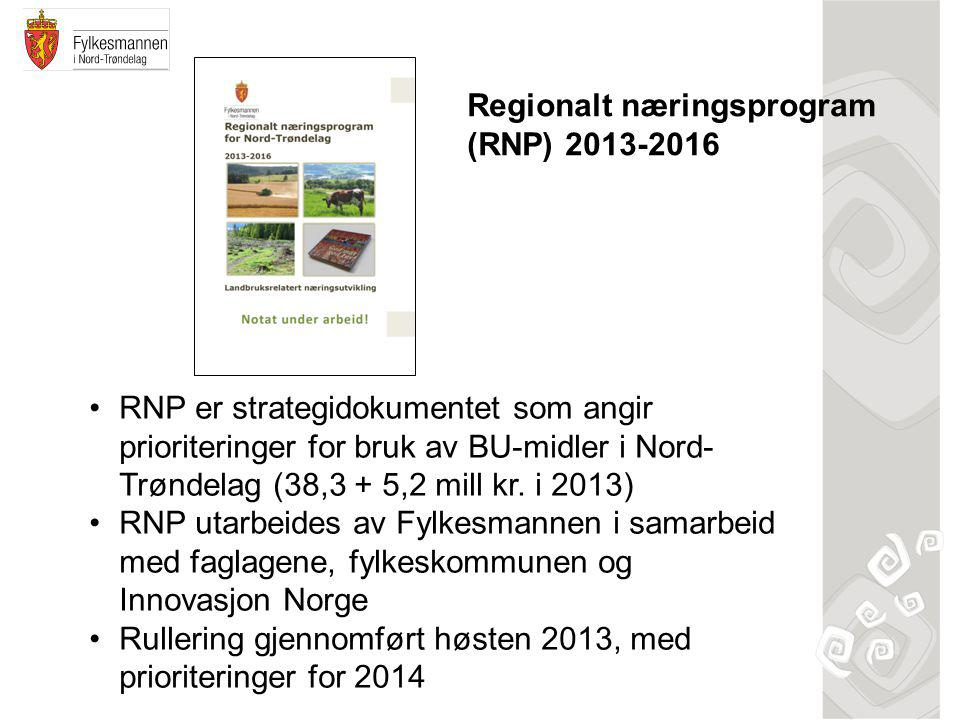 Regionalt næringsprogram (RNP) 2013-2016