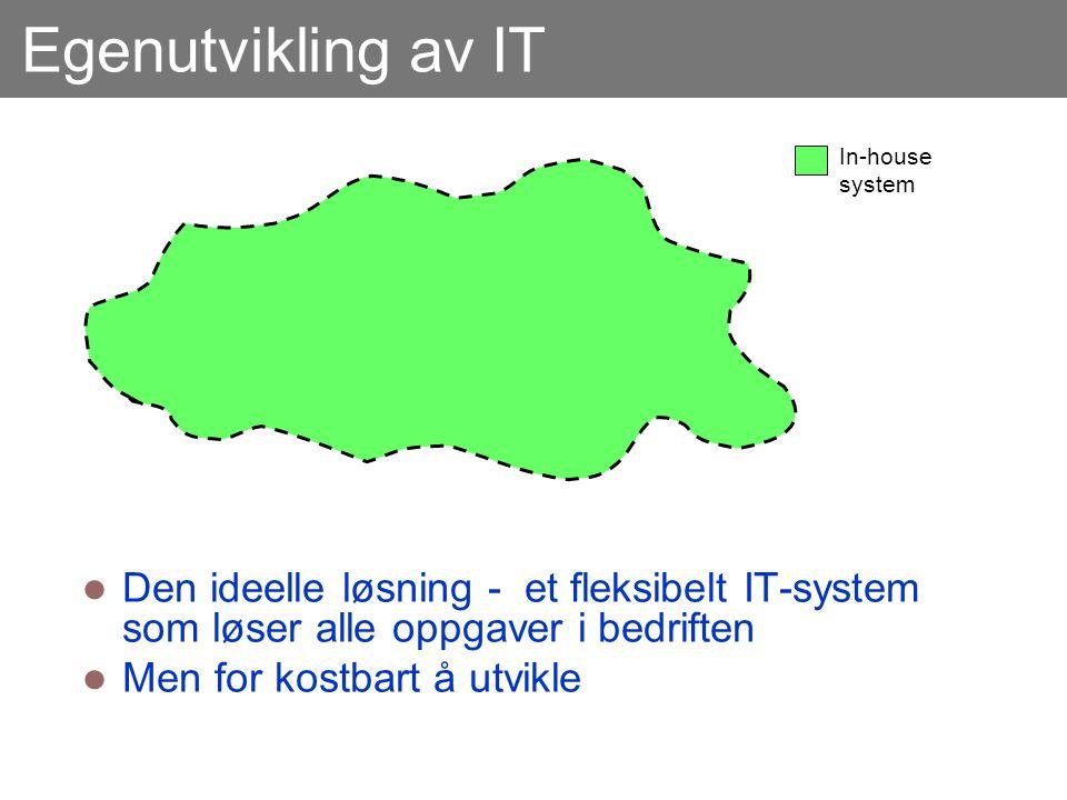 Egenutvikling av IT In-house system. Den ideelle løsning - et fleksibelt IT-system som løser alle oppgaver i bedriften.