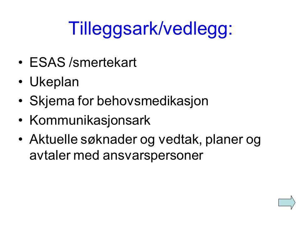 Tilleggsark/vedlegg: