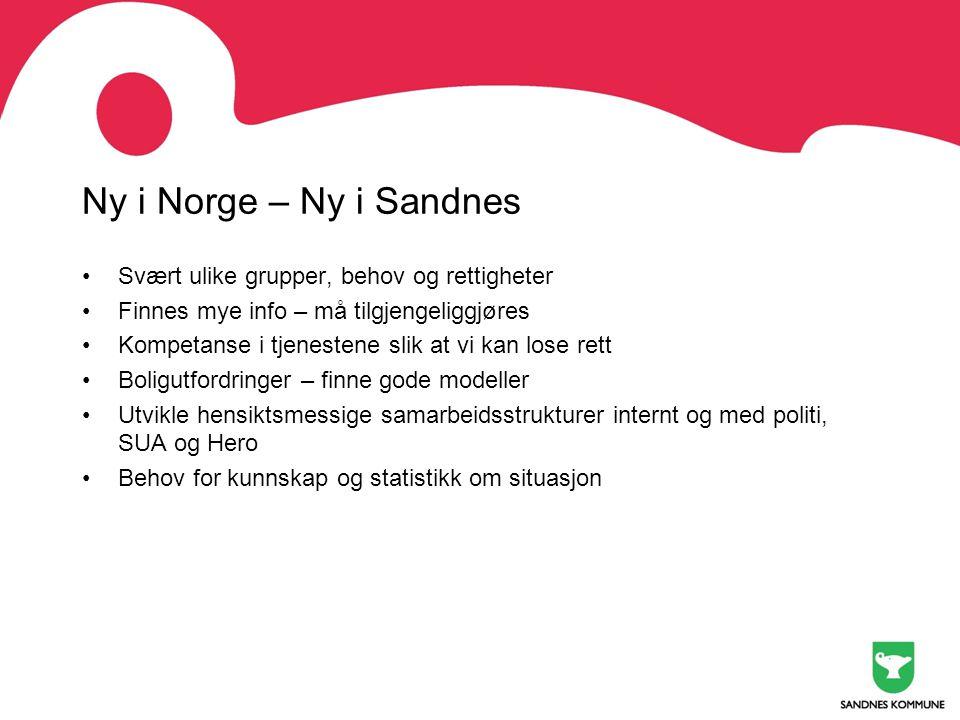 Ny i Norge – Ny i Sandnes Svært ulike grupper, behov og rettigheter
