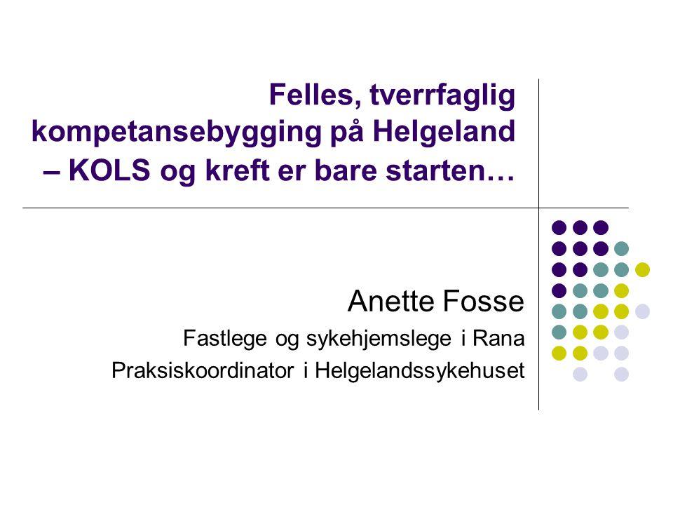 Felles, tverrfaglig kompetansebygging på Helgeland – KOLS og kreft er bare starten…