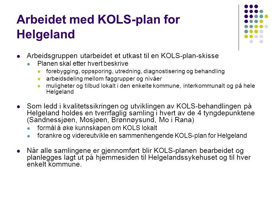 Arbeidet med KOLS-plan for Helgeland
