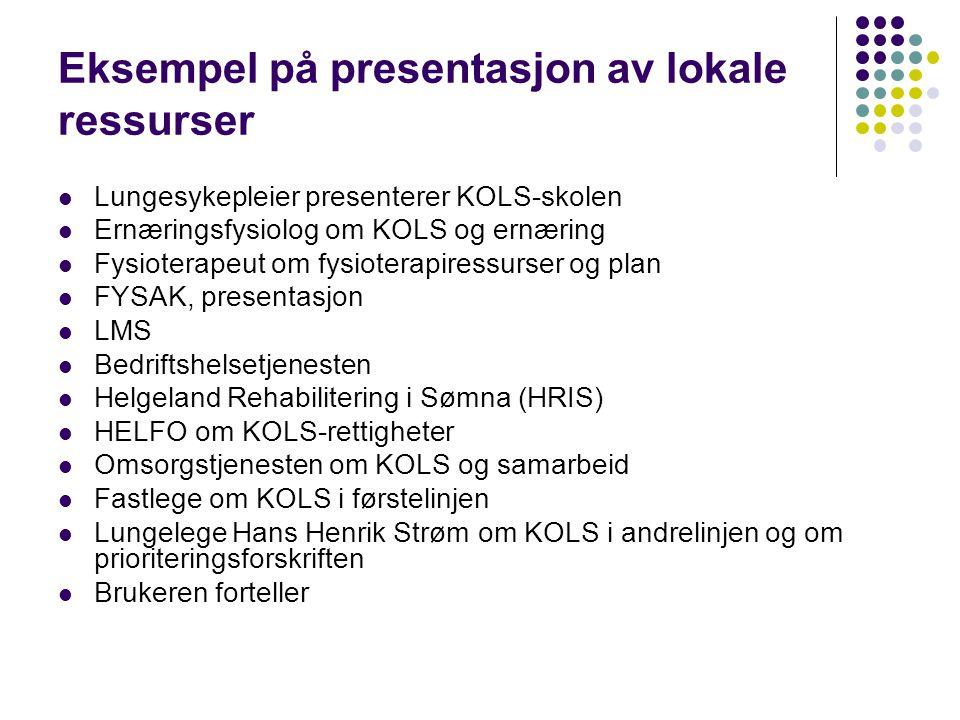 Eksempel på presentasjon av lokale ressurser