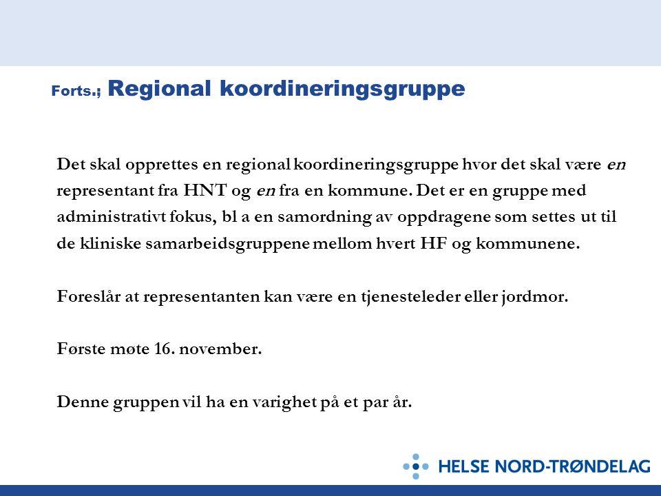 Forts.; Regional koordineringsgruppe